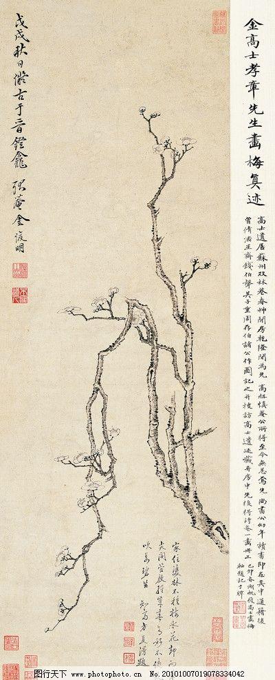 金俊明 国画 梅花 树枝 花朵 花卉 工笔 书法 立轴 国宝 字画 文化