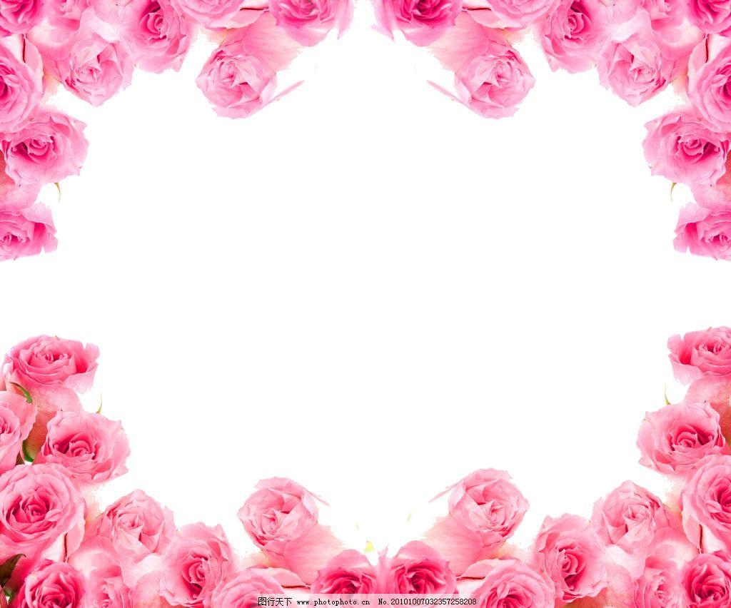 边框 玫瑰花边图片