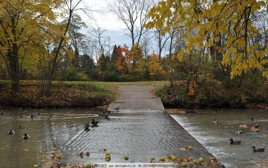秋天河岸景色 风光摄影图片 自然风光 秋天景色 秋季风光 河流