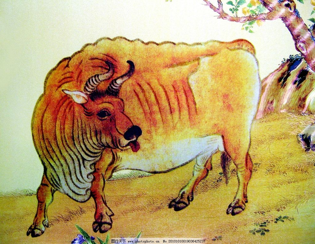 工笔重彩画 动物画 现代国画 牛 黄牛 花木 花朵 花草 野外 石头 草地
