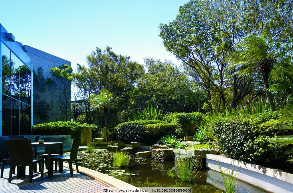 景观设计 室外景观拍摄 酒店设计 香格里拉酒店 五星级酒店 水池