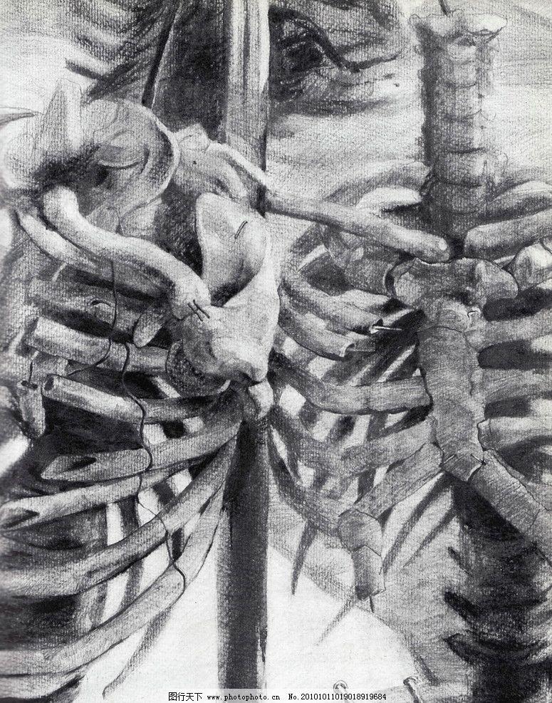 师生作品 高考素描 大学素描 静物素描 骨头 骷髅 书 头骨 羊头 羊角
