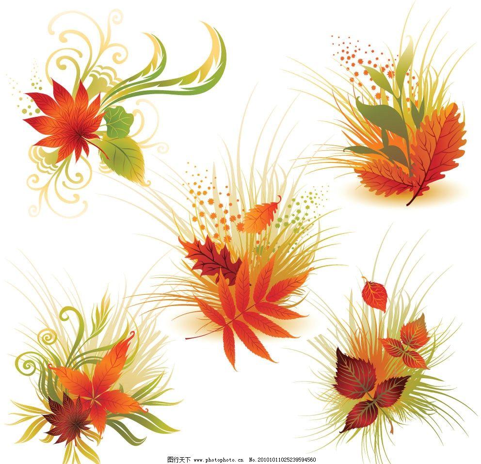 花纹/秋天的枫叶花纹梦幻花纹绿叶图片