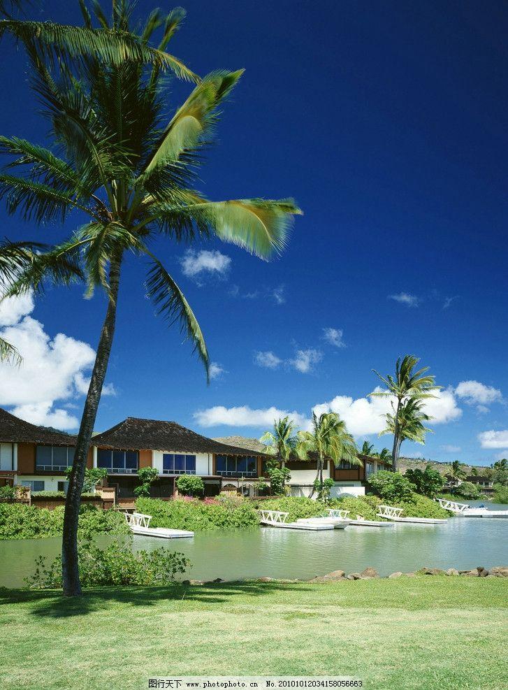 草地 湖水 別墅 椰子樹 藍天 白云 天邊 照片背景 天空 高清自然風景