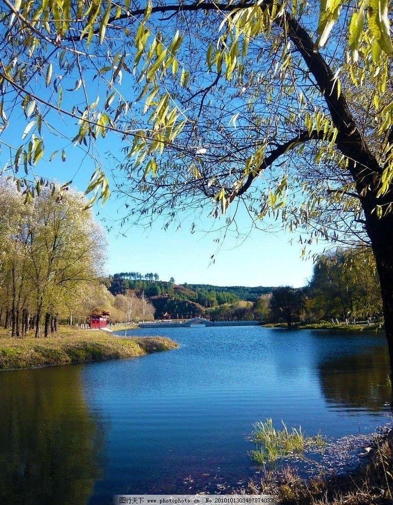 伊春金山公园碧水湖图片