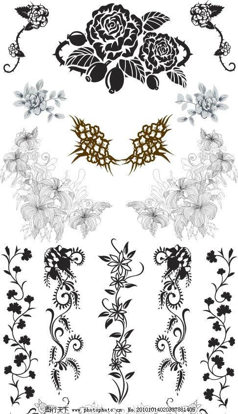 花纹图片 矢量花卉 花纹 花边 欧式花纹 花朵 线条 藤蔓 藤类 花藤 底