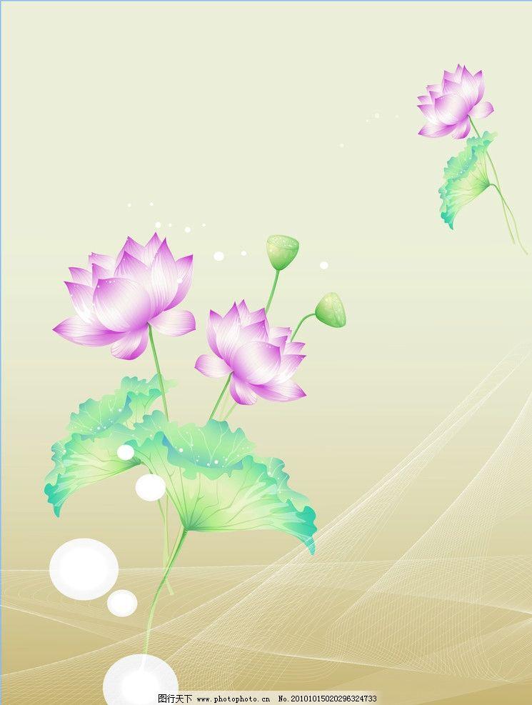 莲花边框简笔画