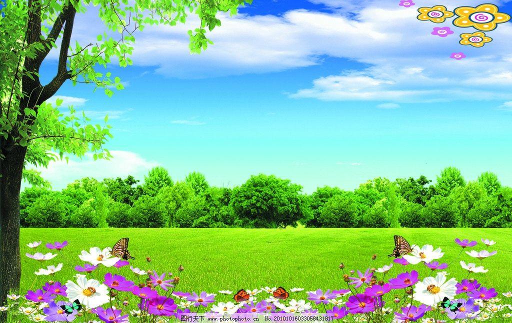 大树 蓝天 白云 树林 草地