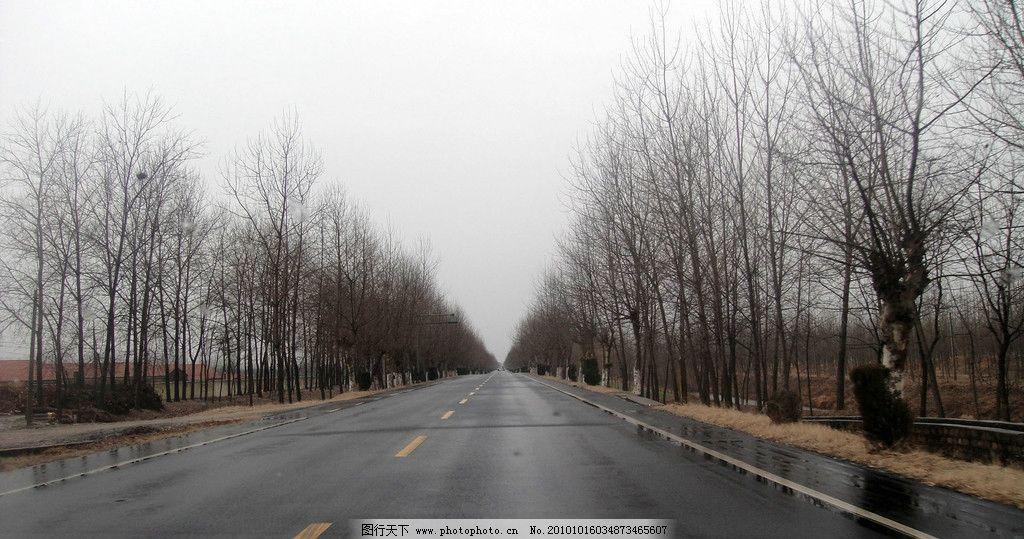 公路 一级路 冬天的风景 冬天的树 刚下过雨 路面 阴沉的天气