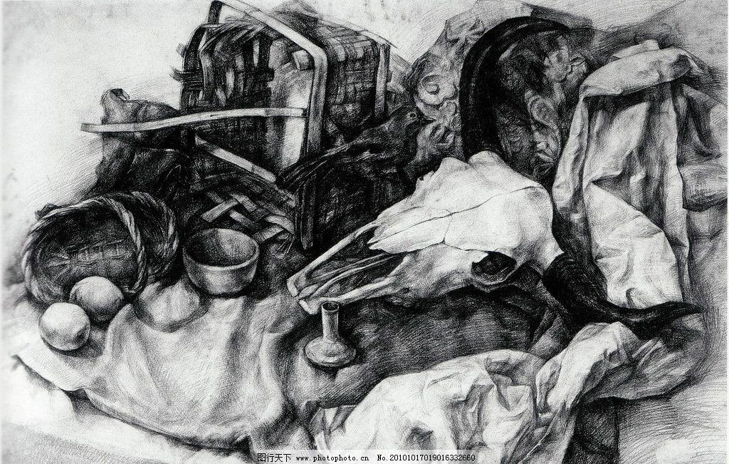 素描羊头骨结构图