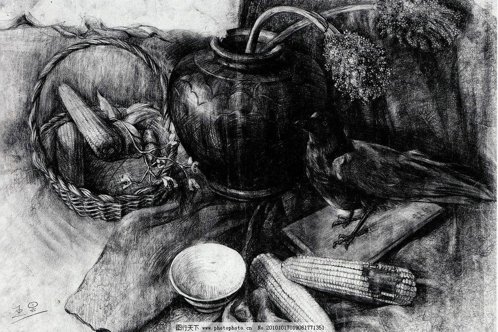 师生作品 高考素描 大学素描 静物素描 标本 鸟 篮子 玉米 碗 陶罐