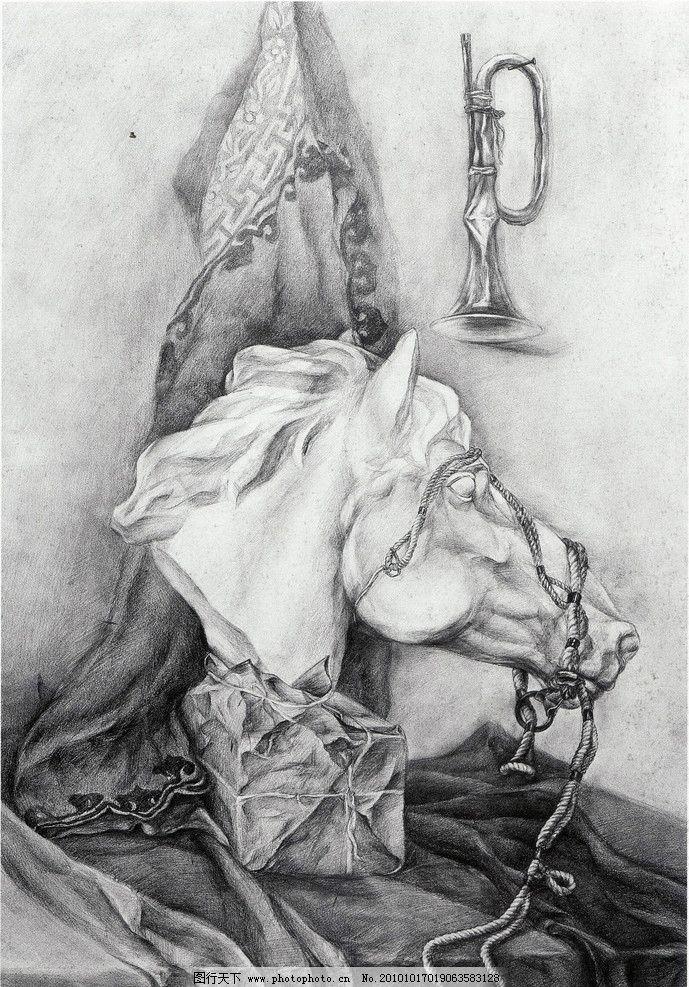 马头素描图片步骤图