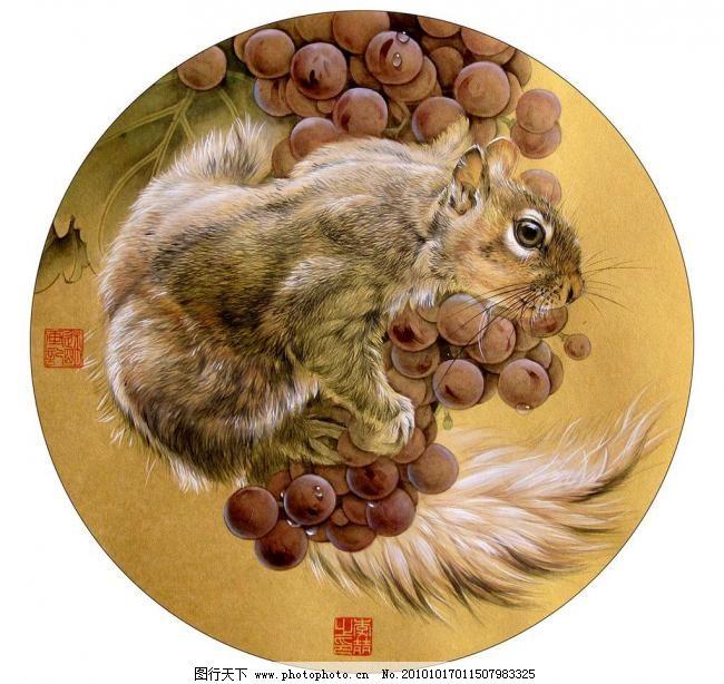 松鼠葡萄图 彩墨画 工笔画 国画艺术 绘画 绘画书法 松鼠葡萄图设计