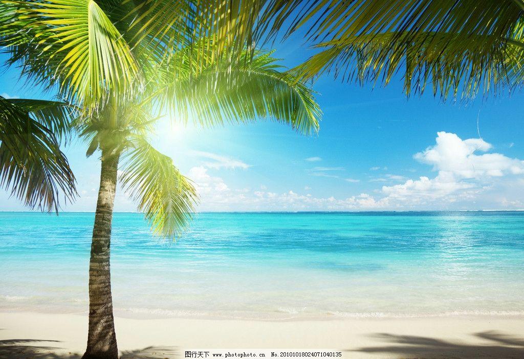 海边风景 大海 海边 沙滩 椰树 倒影 海滩 海水 海面 夏天 夏日 休闲