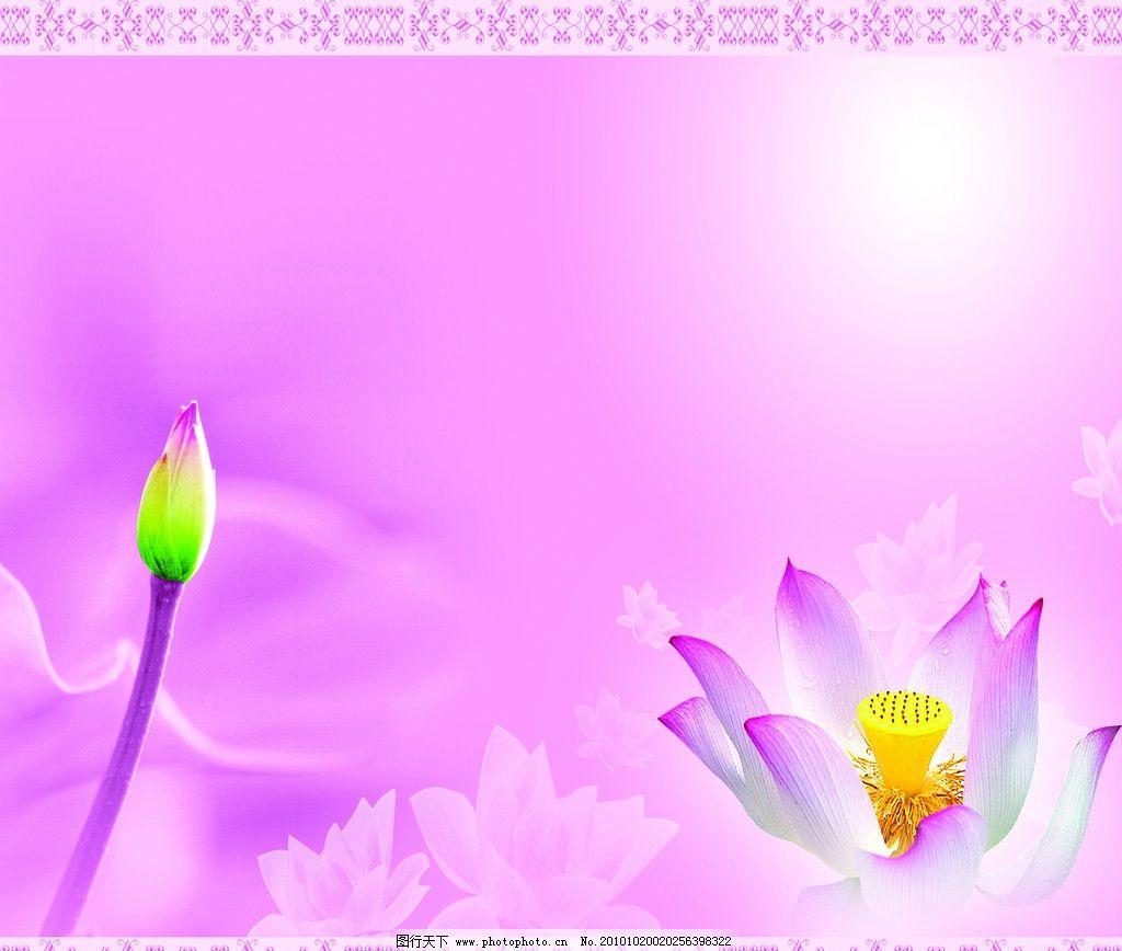 莲花 荷花 粉色 条纹 背景底纹 底纹边框 设计 254dpi jpg