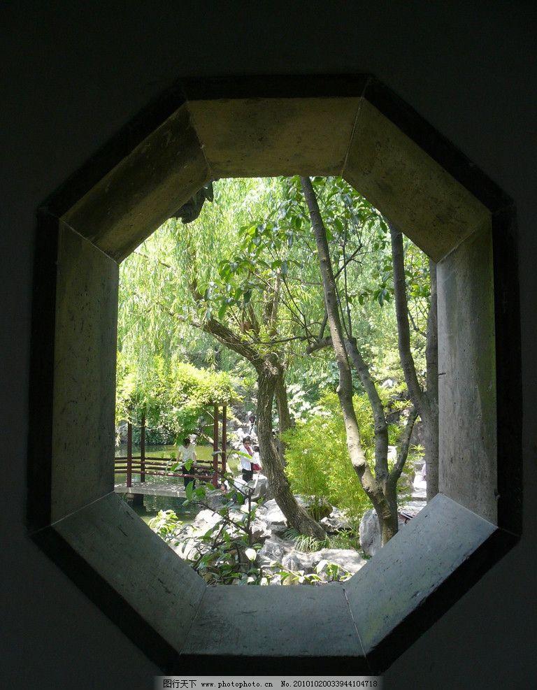 植物 旅游拍摄 苏州 景观设计 树木 风景拍摄 园林设计 网师园 水池
