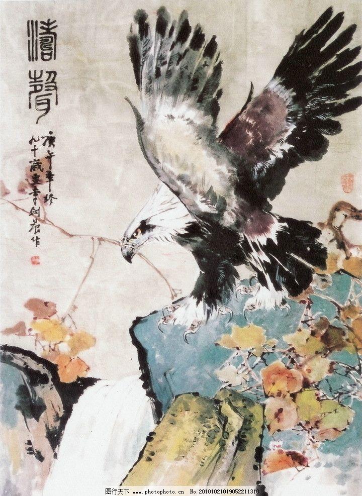 中国画 风景国画 写意画 书法 大师作品 写意 水墨画 花 老鹰 动物