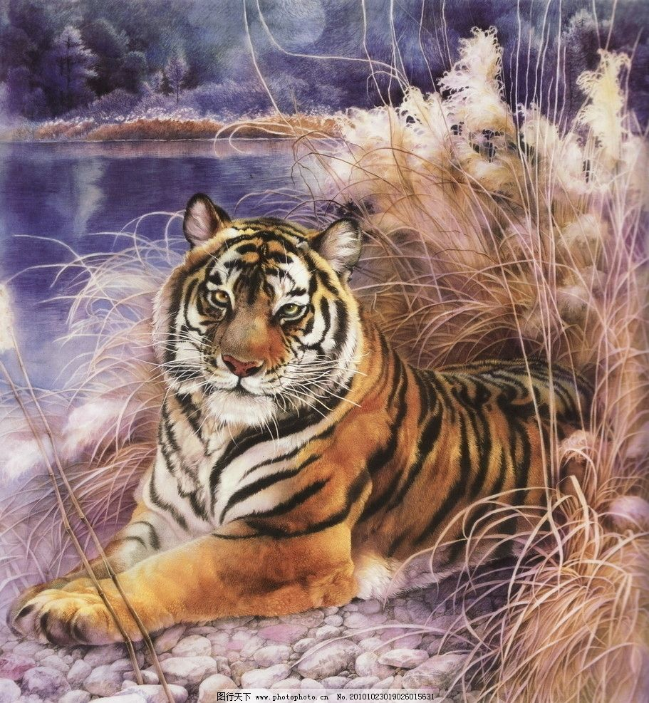 老虎海 工笔画 线描 国画 中国画 植物 树木 大师作品 风景画