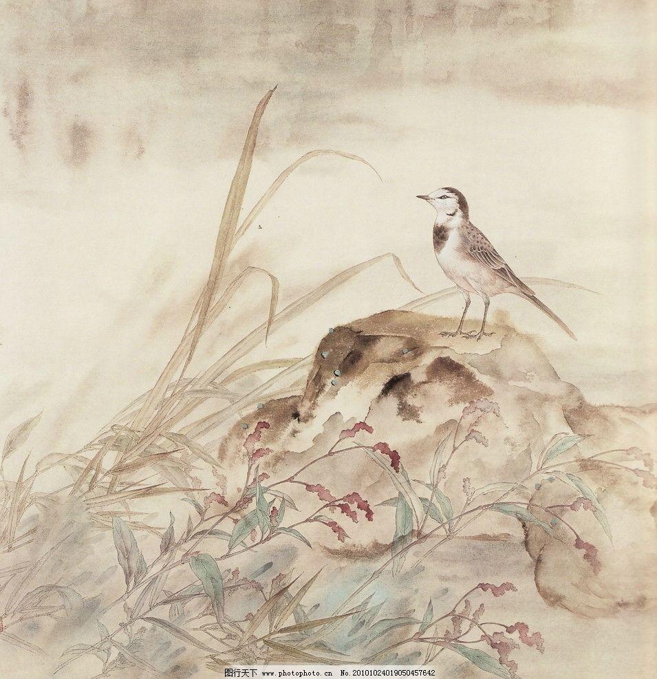 蓼草鹘鸽 工笔画 线描 国画 中国画 植物 树木 大师作品 风景画