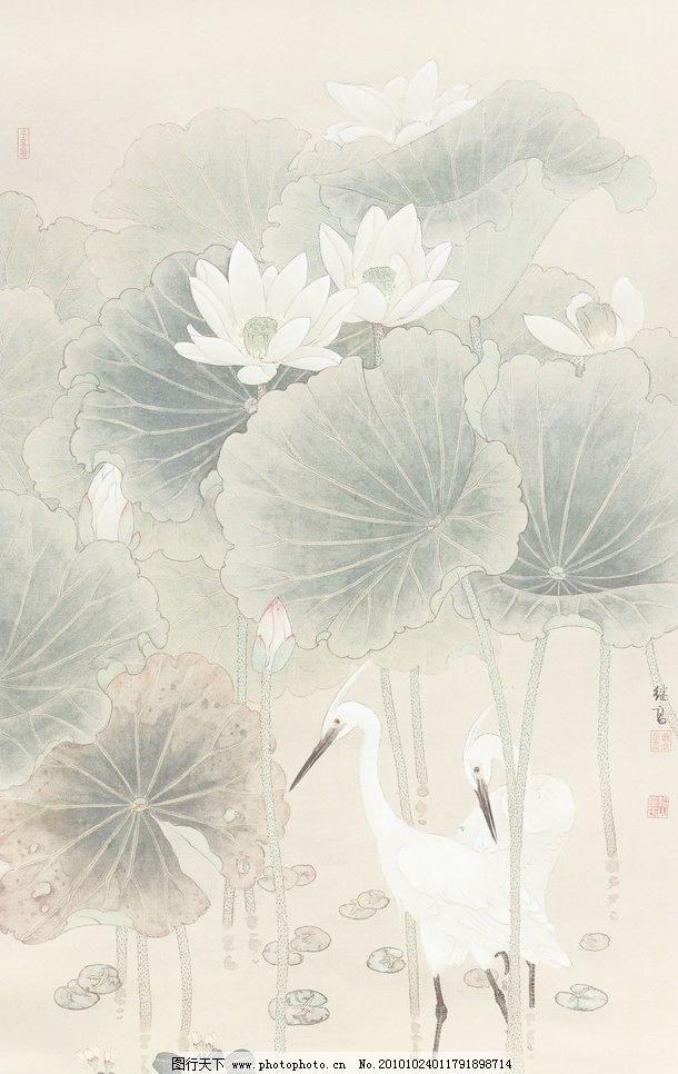 荷花 荷叶 花 秋荷白鹭设计素材 秋荷白鹭模板下载 秋荷白鹭 工笔画