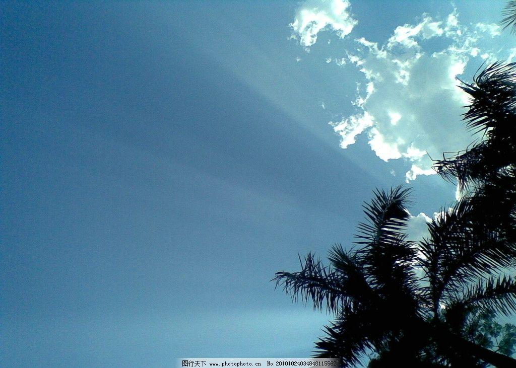 阳光与树木 阳光 云朵 树木 蓝天白云 光芒四射 自然风景 自然景观