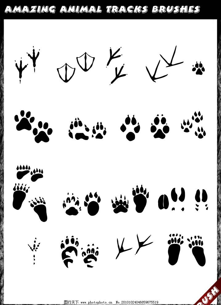 动物脚印笔刷 脚印 爪子 印记 巴掌 手掌 脚丫子 够脚印 熊脚印 鸭子