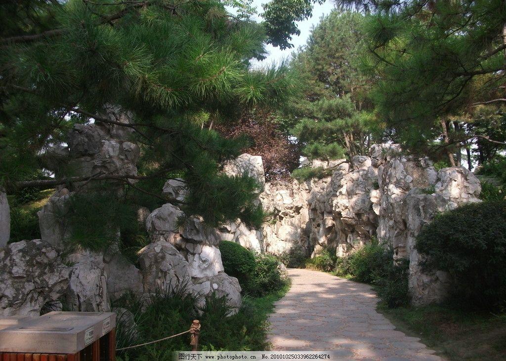 斑驳的石头与松树 垃圾桶 石面小路 松树 天空 杂草 石头 国内旅游