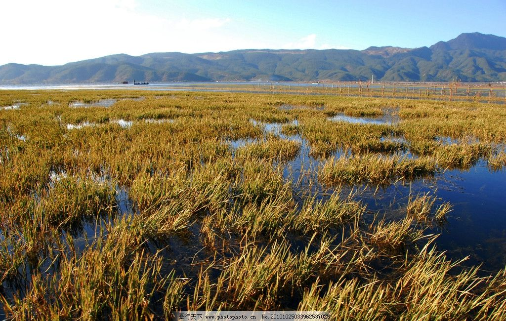 拉市海 云南 丽江 风景 摄影 旅游 采风 湖水山 水波 秋天