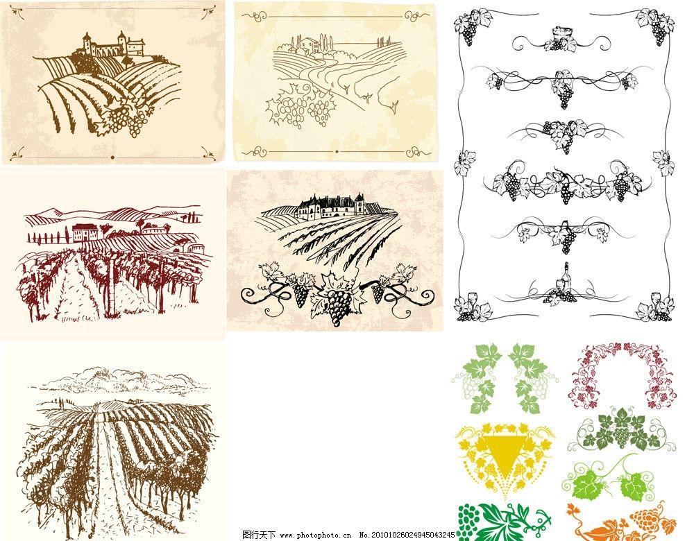 漫画葡萄园 葡萄花纹 花边 边框图片