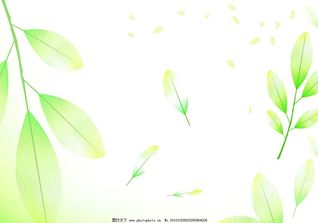 透明绿叶 绿色 叶 梦幻 时尚 花方 潮流 花朵 星光 背景底纹 底纹边框