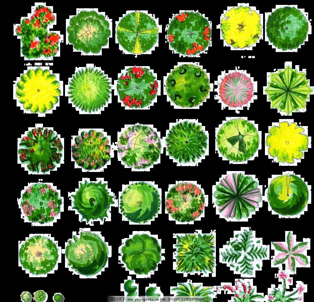 彩平图 树 彩平图素材 彩色平面图 园林 景观 建筑等素材 景观设计