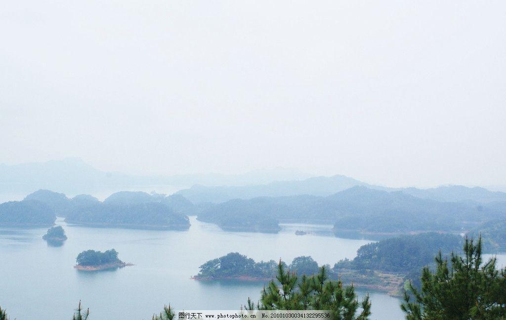 浙江 千岛湖 岛 湖 许多岛 树木 松树 松针 蓝天 自然风景 旅游摄影