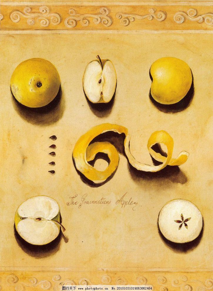 水果 欧式水果 60 静物 苹果 绘画书法 文化艺术 设计 325dpi jpg