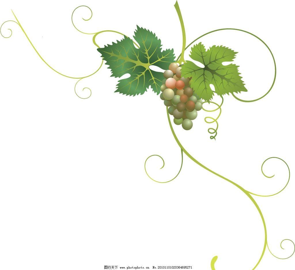 新鲜的葡萄 葡萄花纹 花纹花边 底纹边框 矢量 ai