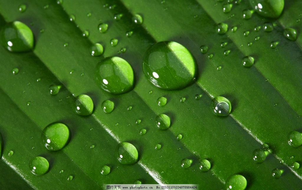 水主题素材 生命之水 自然风光 自然景观 自然景色高清图片 自然风景