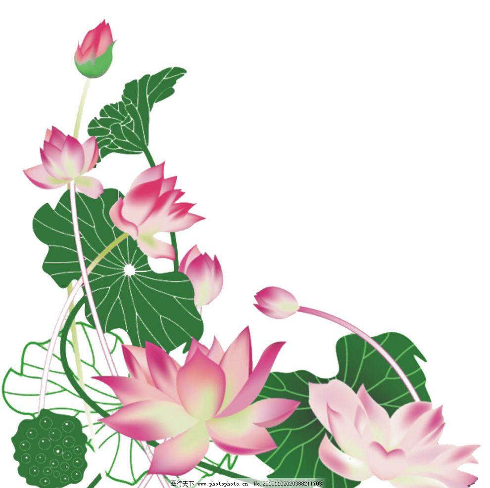 荷花 传统图案 花边 花边花纹