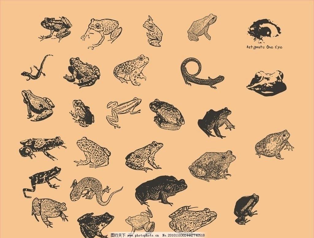 青蛙矢量图图片