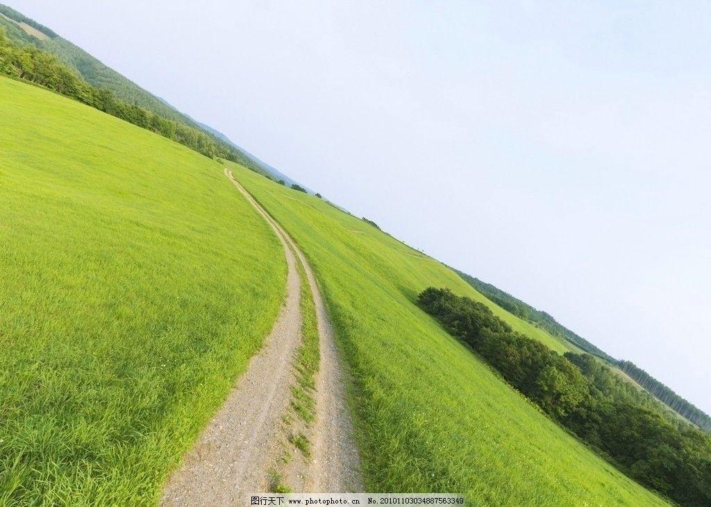 草原图片,草地 绿色背景 天空 辽阔 自然风景 自然-图