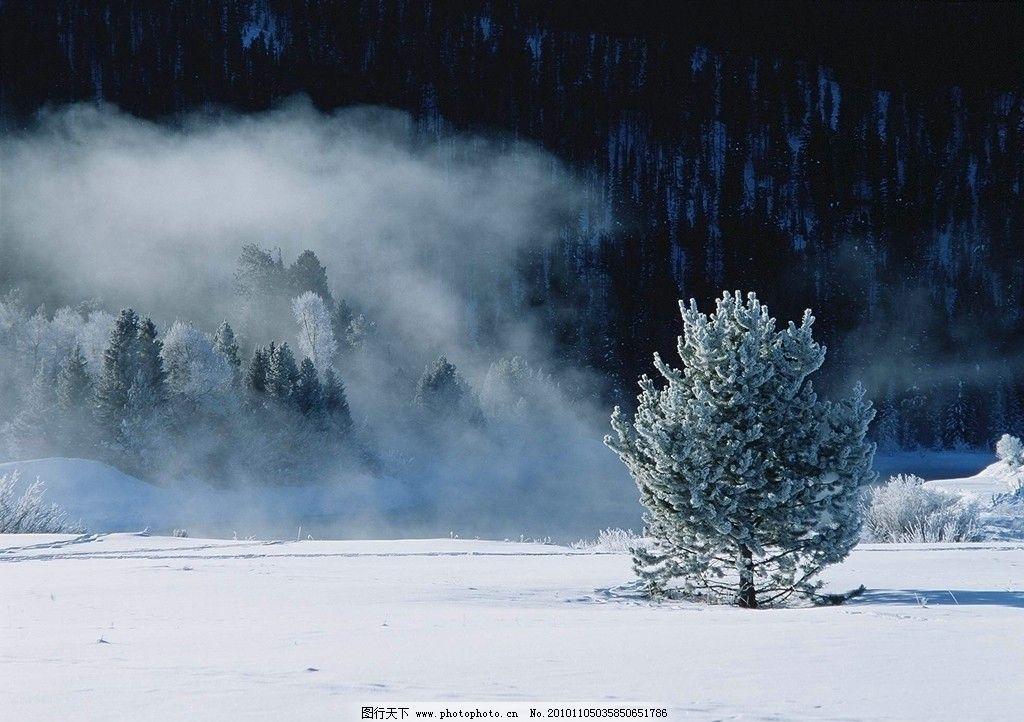 雪景 雪天 冬景 背景图 自然风景 自然 景观 雪地 枯枝 自然景观 摄影