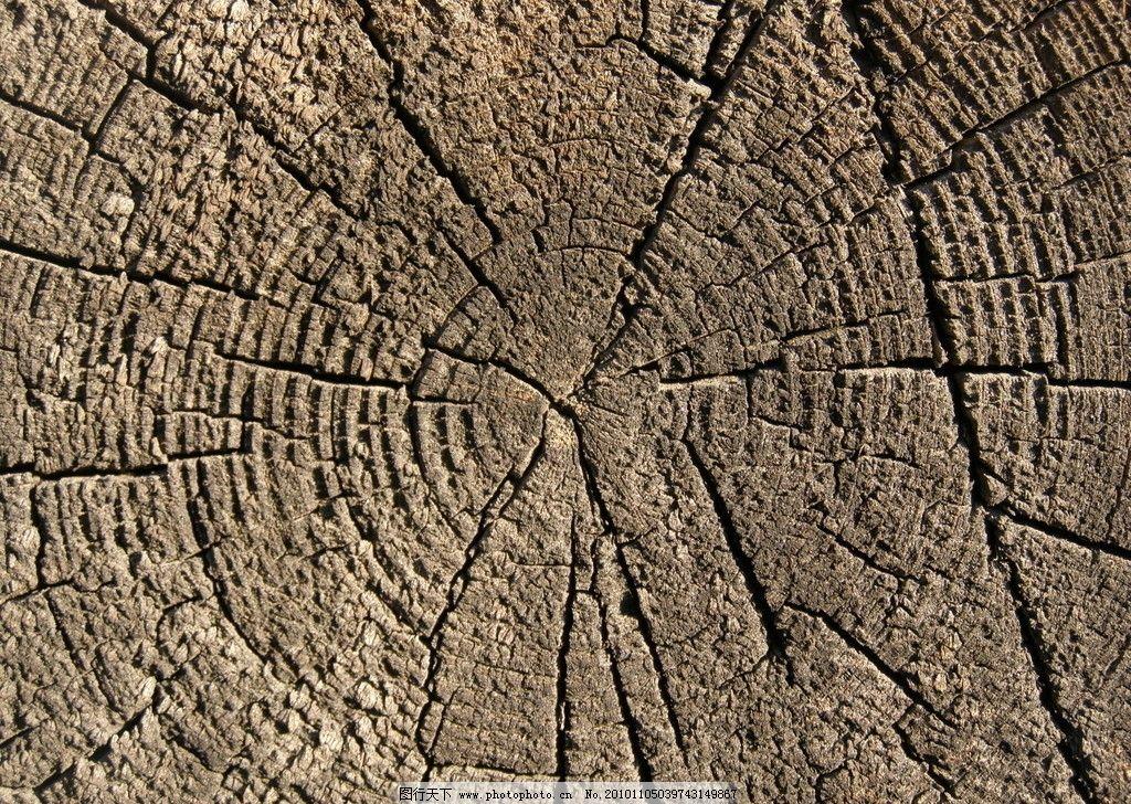 木头雕刻的树叶图片