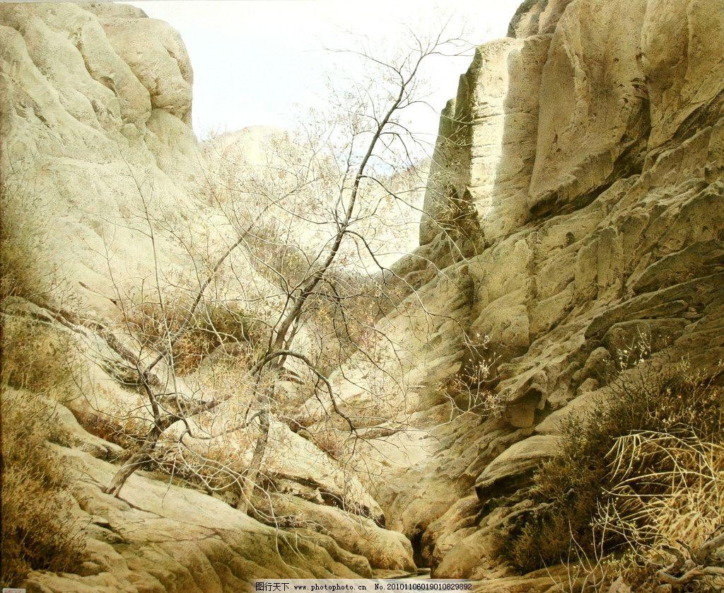故土萦怀 陶世虎 水彩画 写实 树木 冬天 中国画 松树 杨树 枯草 石头