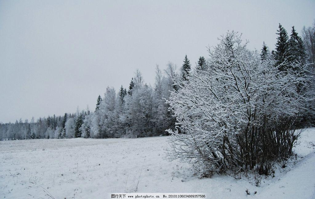 冬季风景图片