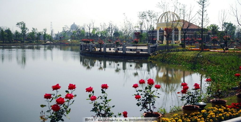 太仓 月季公园 公园风景 国内旅游 旅游摄影 摄影 300dpi jpg