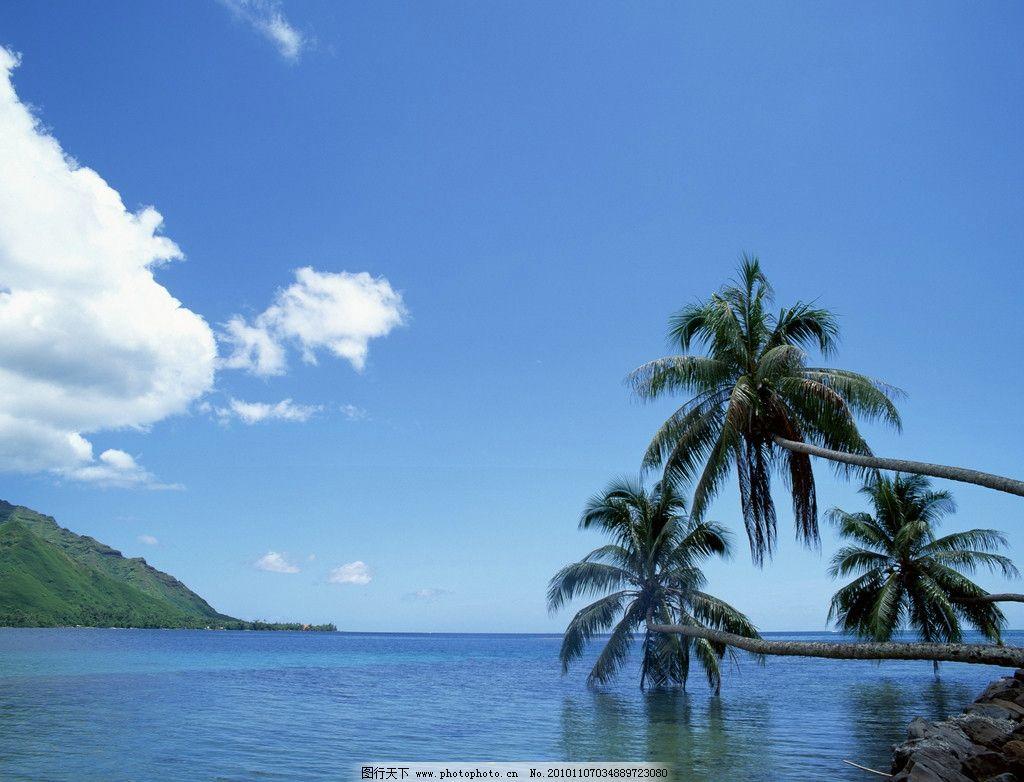 自然风光 波浪 蓝天白云 海滩 沙滩 海边 椰树 蓝色海水 风光摄影图片