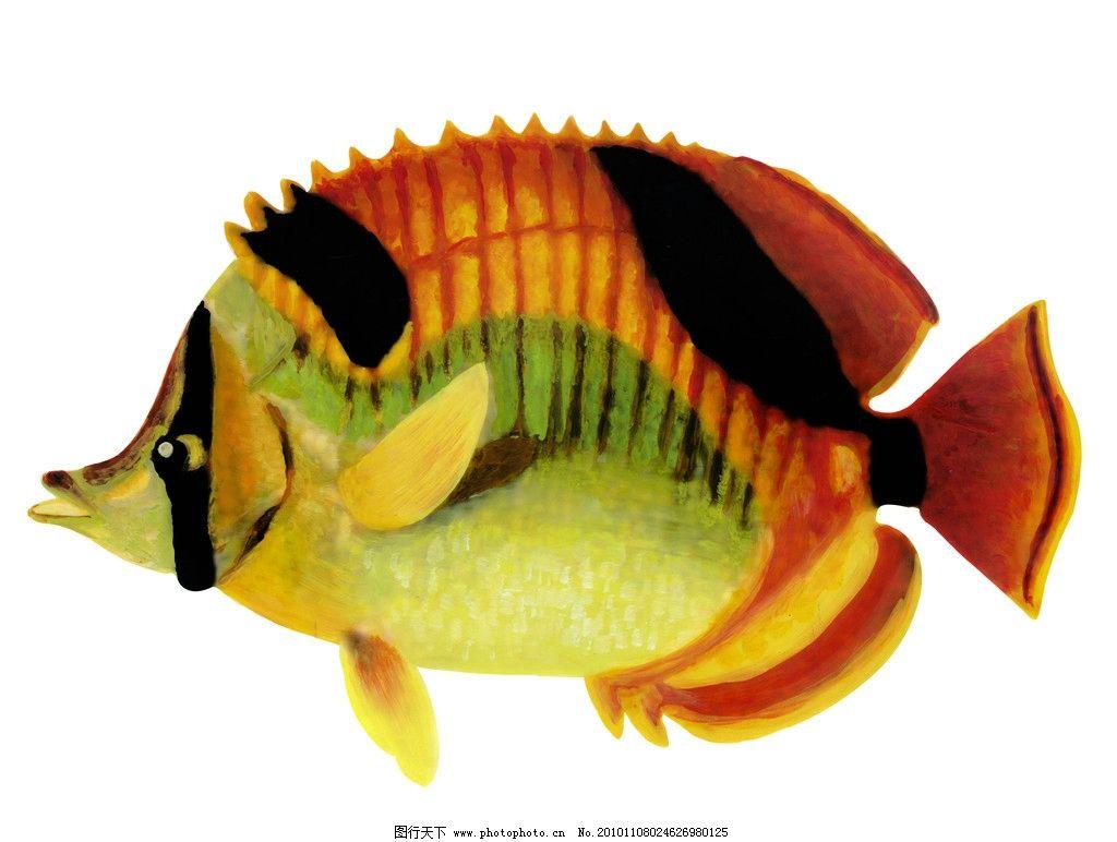 水里大嘴巴的动物图片