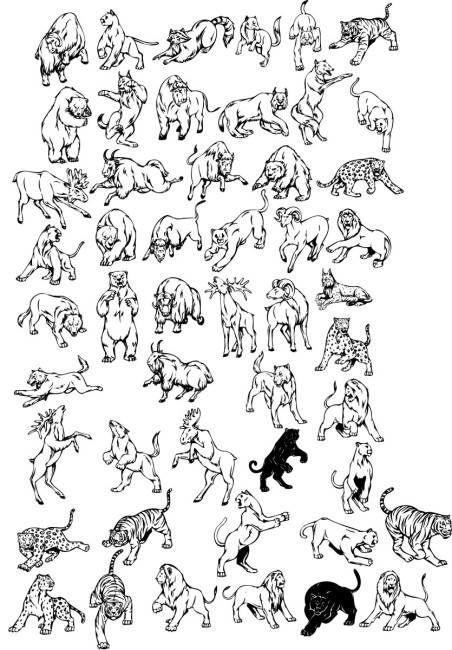 各种野兽50款免费下载 豹 虎 狮子 矢量动物 熊 各种野兽 熊 豹 虎
