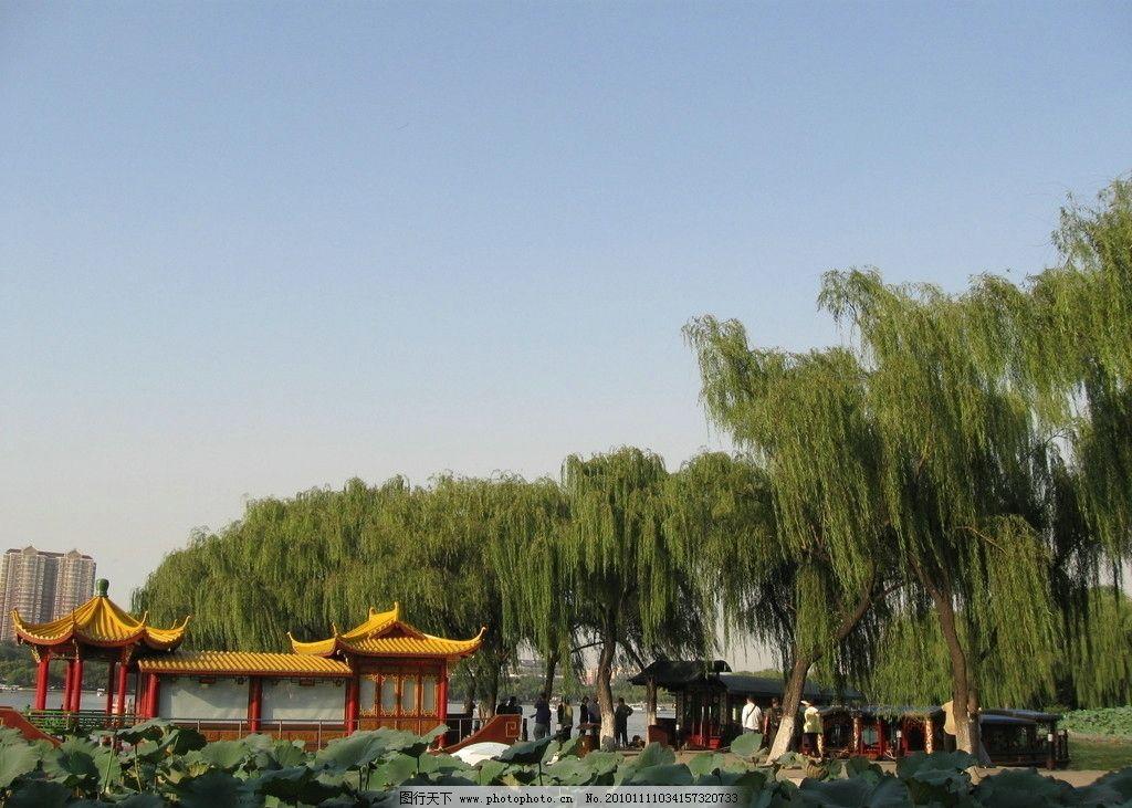 大明湖 大明 明湖风光 济南大明湖 公园 荷花 柳树 亭子 船 自然风景