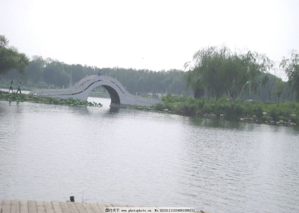 小桥 河水 绿树 柳树 拱桥 荷花 自然风景 自然景观 摄影 314dpi jpg