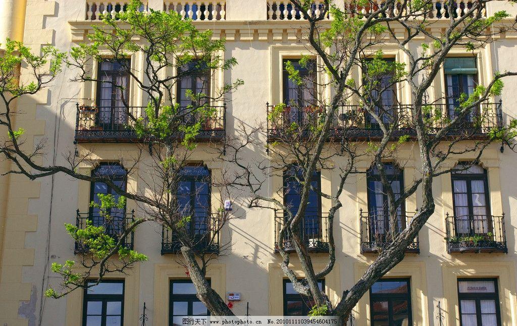 欧式建筑 欧式 建筑 窗户 铁艺 仰视 图案 铁栏 浮雕 树木 建筑摄影