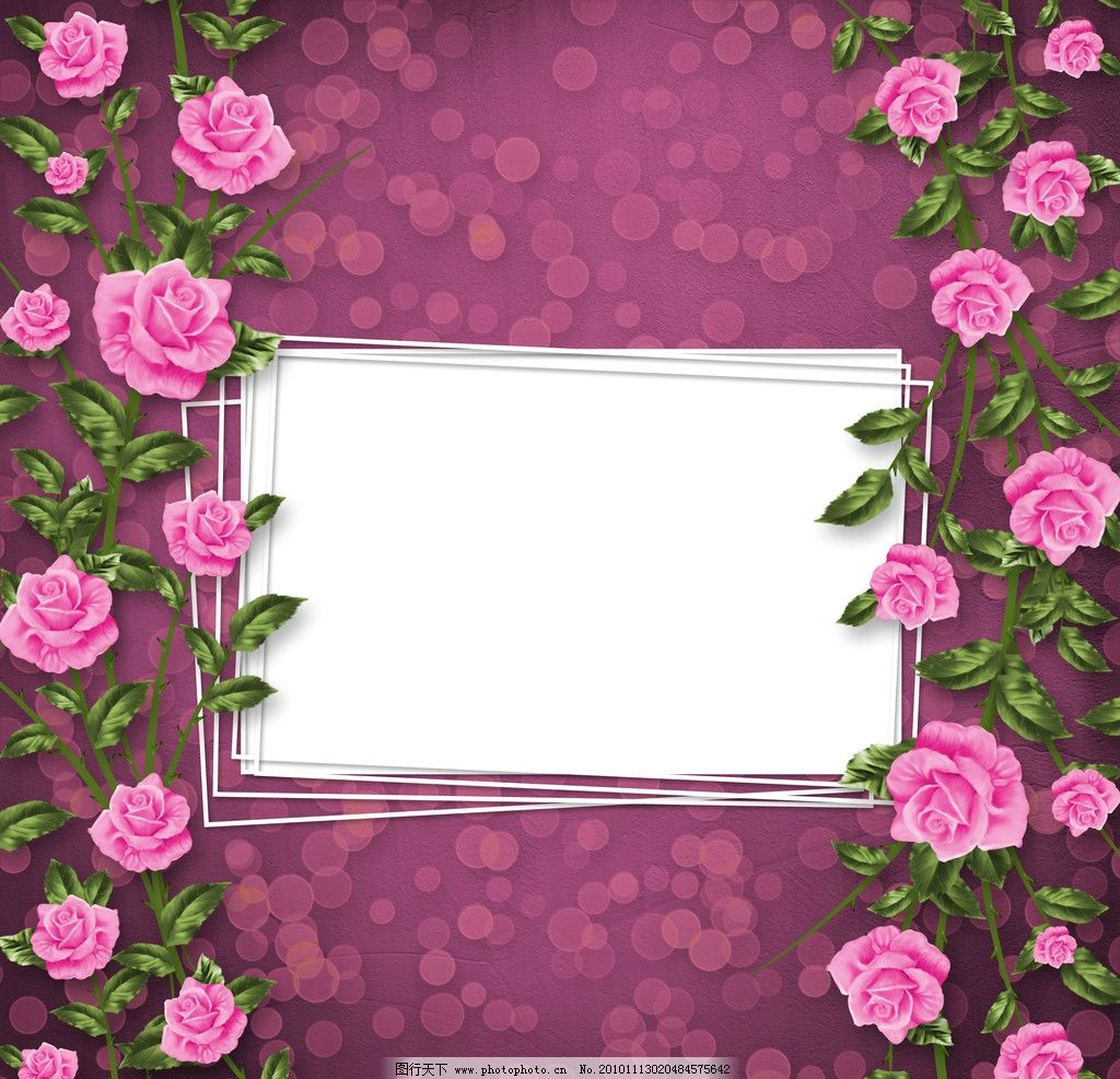 玫瑰花 花纹背景 相册模板 花纹 边框 底纹 边框相框 底纹边框 设计 3